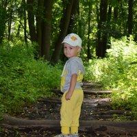 Прогулка в лесу :: Виктория Аристова