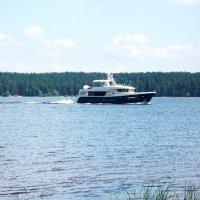 Мчится катер по Волге реке :: Domna Kuznechic