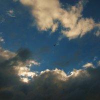 Среди облаков... :: Борис