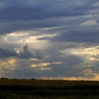 небо перед дождём :: Alice Madman