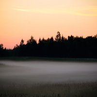 Вечерний туман. :: Инта