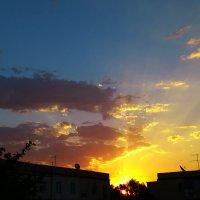 Золотой привет солнышка :: Мухаббат Юлдашева