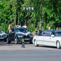Экстремальная съёмка. :: Анатолий Клепешнёв
