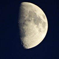 Луна из окна) :: Наталья