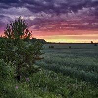 Кровавый закат :: Валерий Шибаев
