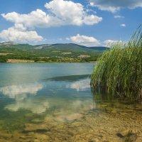 Озеро в Байдарской долине :: Игорь Кузьмин