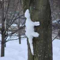 Снежный динозаврик :: Валерий Антипов