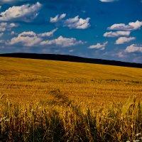 beautiful Ukraine :: krystyna