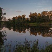 Гладь старинного пруда :: Илья Костин