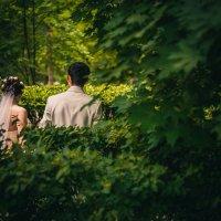 В гор.парке :: Evgeniy Gavrilin