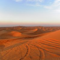 Пустыня Руб-эль-Хали :: Маргарита