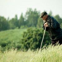 Человек на земле :: Владимир Новиков