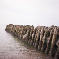 Море :: Роман