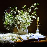 Цветёт вишня... :: Валентина Колова