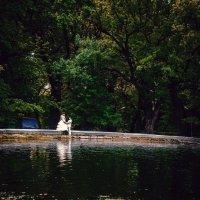 Свадьба :: Evgeniy Gavrilin
