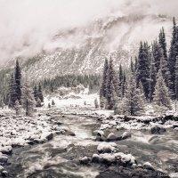 Тянь Шань неожиданно снег.. :: Максим Гололобов