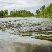 Речные потоки :: юрий Амосов