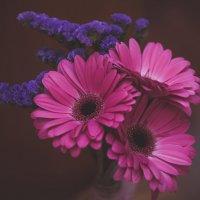 Цветы :: Katerina Koroleva