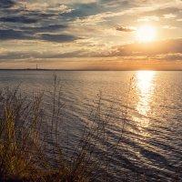 Рассвет над озером. :: Елена Черненко
