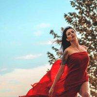 Красная роза :: Nina Zhafirova