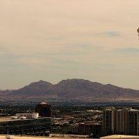 Las Vegas :: Krista Kuznetsova