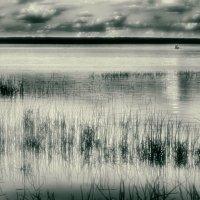 ...на озере... :: Ольга Сергеева