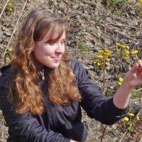 Солнечный цветок :: Елена Федотова