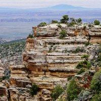 Слоёные скалы. Гранд каньон. :: Барбара