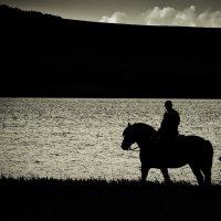 Смотритель озера :: Роман