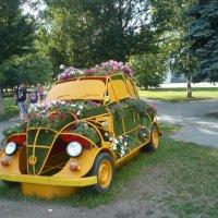 лето в Челябинске :: натальябонд бондаренко