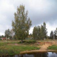 Оредежские пейзажи. :: Виктор Елисеев