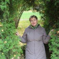 Осень. :: Татьяна Ларионова