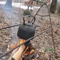 чайник на охоте :: Олег Романенко