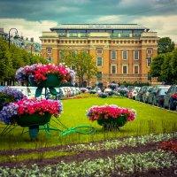 Клумба :: Игорь Вишняков