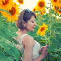 Под солнцем :: Кристина Волкова(Загальцева)