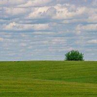 Одиночество :: Petr Shostak