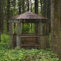 Заброшеная беседка в лесу :: Виталий Житков