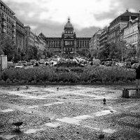 вацловская  площадь :: Владимир Иванов ( Vlad   Petrov)
