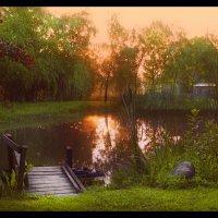 Рассвет на маленьком пруду.... :: Елена Kазак