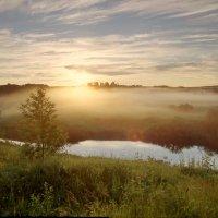 Туман и луговые дали :: Валерий Талашов