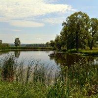 На озере :: Анатолий