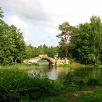 Вид на мостик :: Самохвалова Зинаида