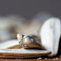 Это семечки :: Igor Khmelev
