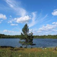 На святом озере Светлояр :: Татьяна Ломтева
