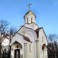 Храм Святого князя Димитрия Донского... :: Тамара (st.tamara)