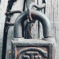зТк :: Света Кондрашова