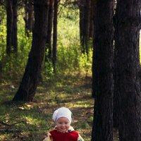 в лесу :: Сергей Ли