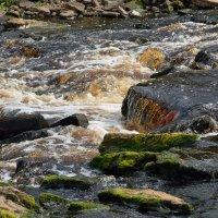 На реке Саблинка (этюд 4) :: Константин Жирнов