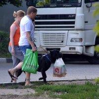 Несём! :: Сергей F
