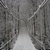 Мост в зимнюю сказку :: Елена Даньшина